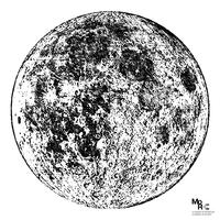 Luna BN.jpg.